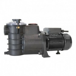 Насос PSH Mini.2-50M c префильтром 7,9 м3/час, 0,37кВт, 220 В (Морская вода)