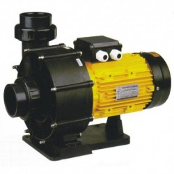 Насос BTP-1500 без префильтра 19,0 м3/час, 220 В (Pool King)