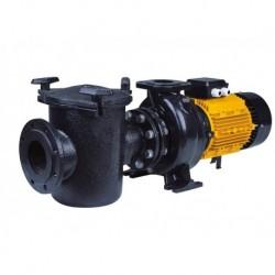 Насос CFRP 125-125-11 с префильтром чугунный 165-195  м3/час, 380В, 11 кВт (Pool King)
